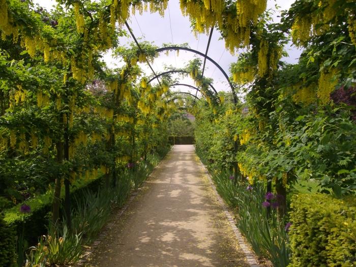 une alle ombrage - Jardin Botanique Metz